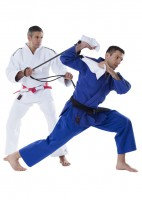 "DAX ""TRIANGLE"" Judo-Grifftrainer"