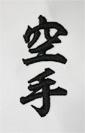 B008-Karate